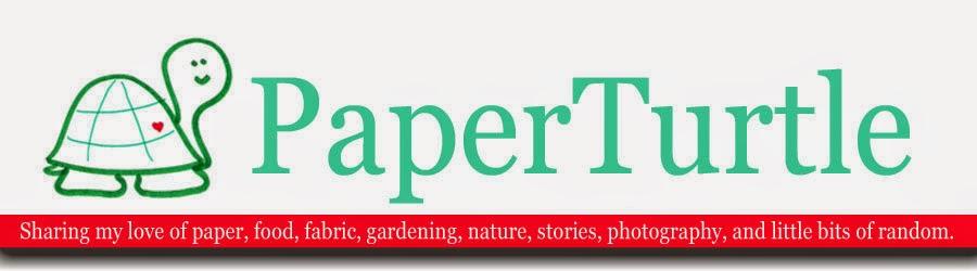 PaperTurtle