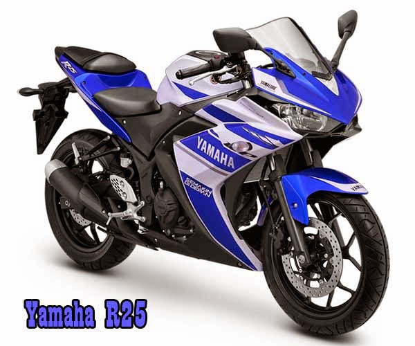Motor Sport Yamaha R25