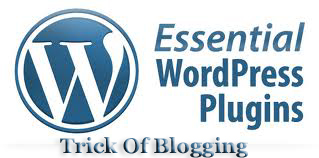 WordPress Best | Easy Plugins Installation List For SEO And Make Professional Wesbite After Blogger