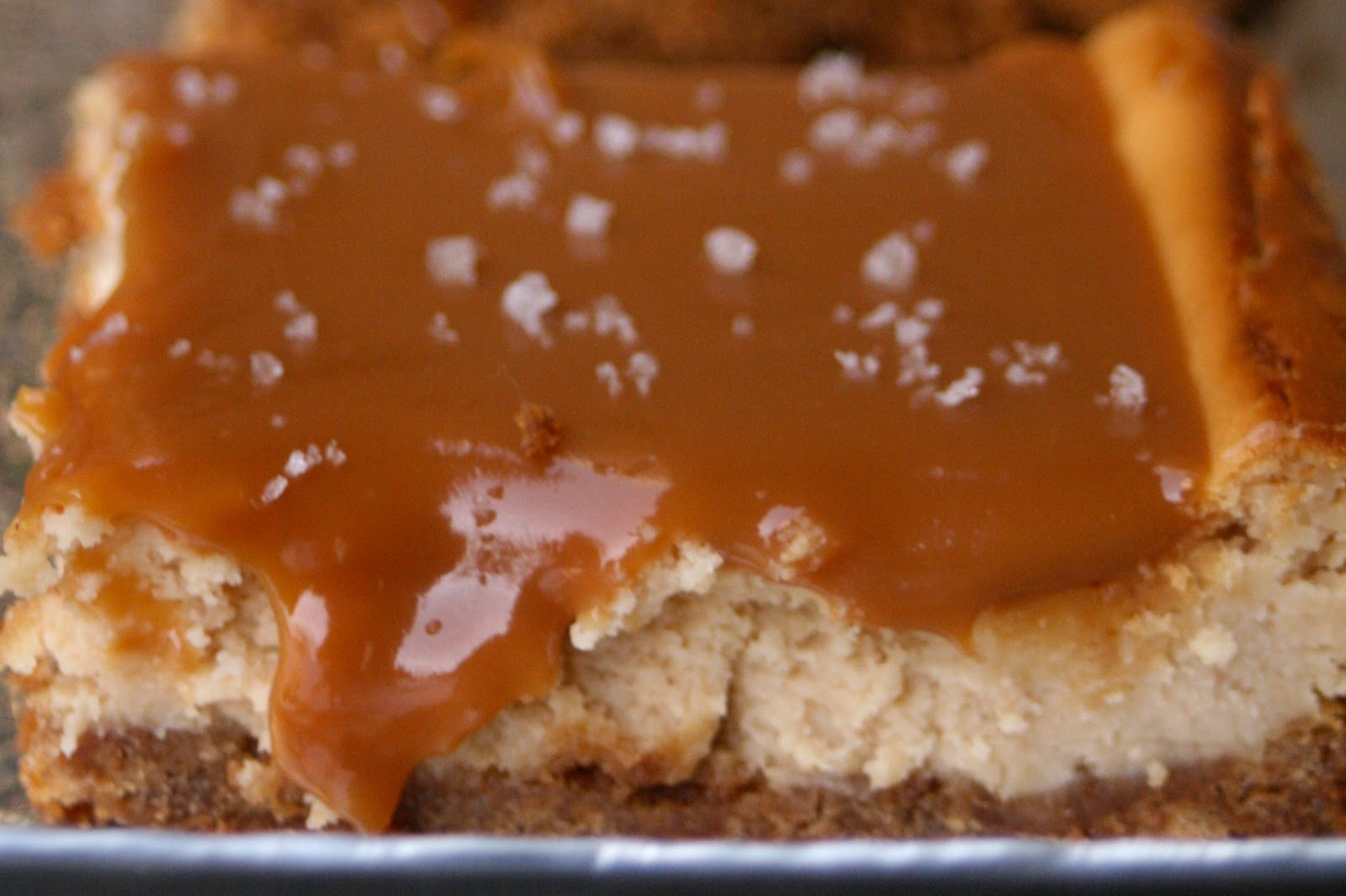 CupcakesOMG!: Salted Caramel Cheesecake Bars and My (Second Place ...