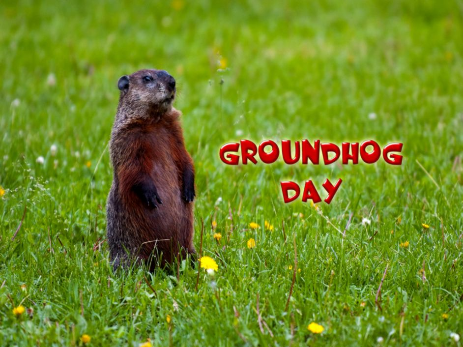 Movies groundhog day wallpaper | 1920x1080 | 338399 | WallpaperUP