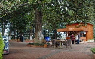 Ziraat Çay Bahçesi Rize