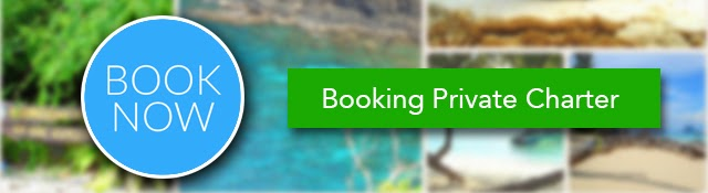 Booking Private Charter