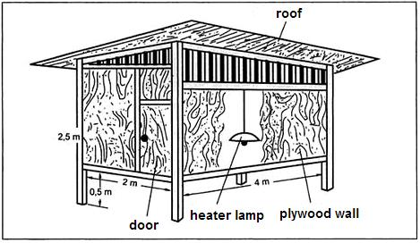 Duck House Plans on Duck  Domestic Duck House Plan