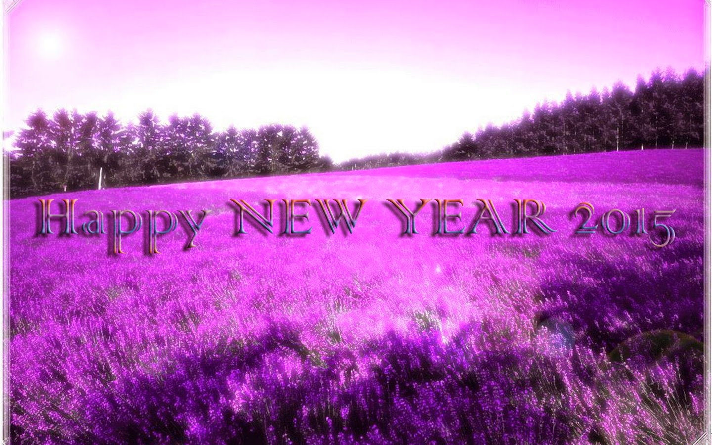Happy New Year 2015 Eve Wallpapers New Year Pictures Fireworks