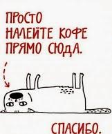 кофе-кот