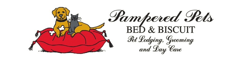 Pampered Pets Bed & Biscuit