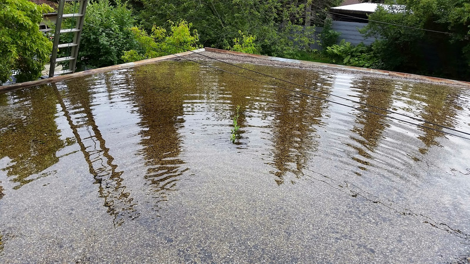 Flat Roof Repair Edmonton