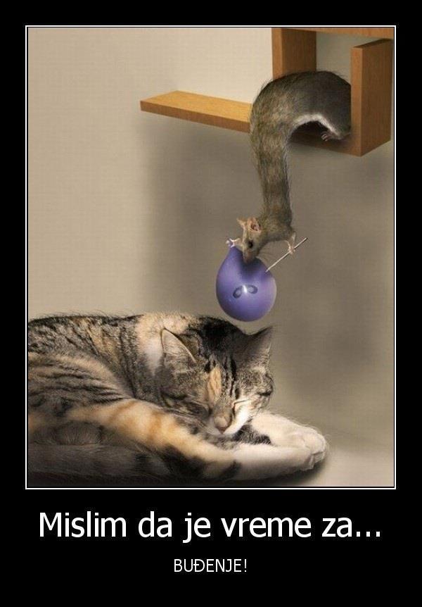 Miš iznad mačke koja spava drži balon i iglu i sprema je za buđenje