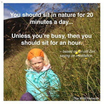 you should sit in nature 20 minutes a day   unless you're busy, then you should sit for an hour