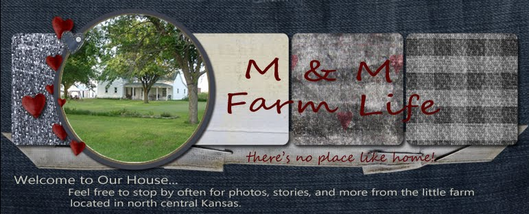 M&M Farm Life