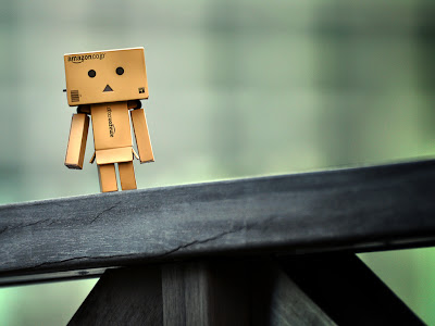 Danbo on Picnic Table