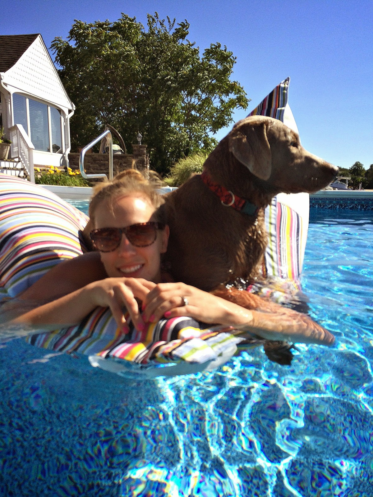 Floating with a silver labrador