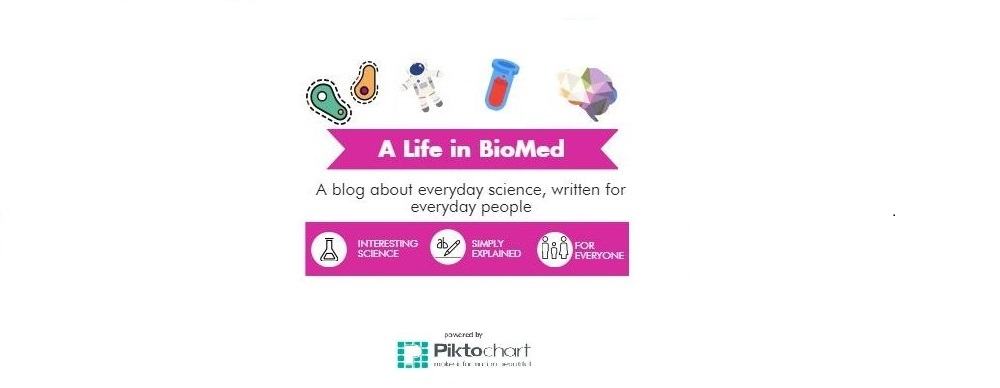A Life in BioMed | Science Blog