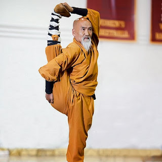 funny picture: kungfu granddad