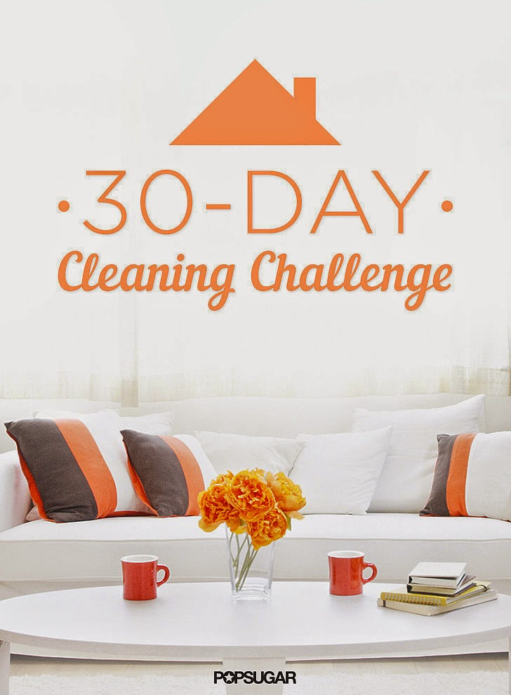 30 Day Cleaning Challenge :: OrganizingMadeFun.com