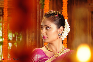 Bhanusri Mehra Latest Pictures in Pink Saree from Chilukuri Balaji Telugu Movie ~ Celebs Next