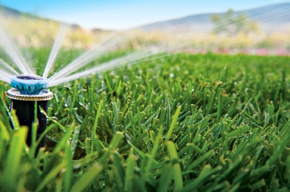 los beneficios del riego automatico en el jard n verde