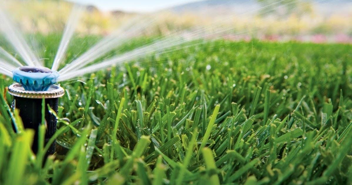 Los beneficios del riego automatico en el jard n verde for Jardin verde
