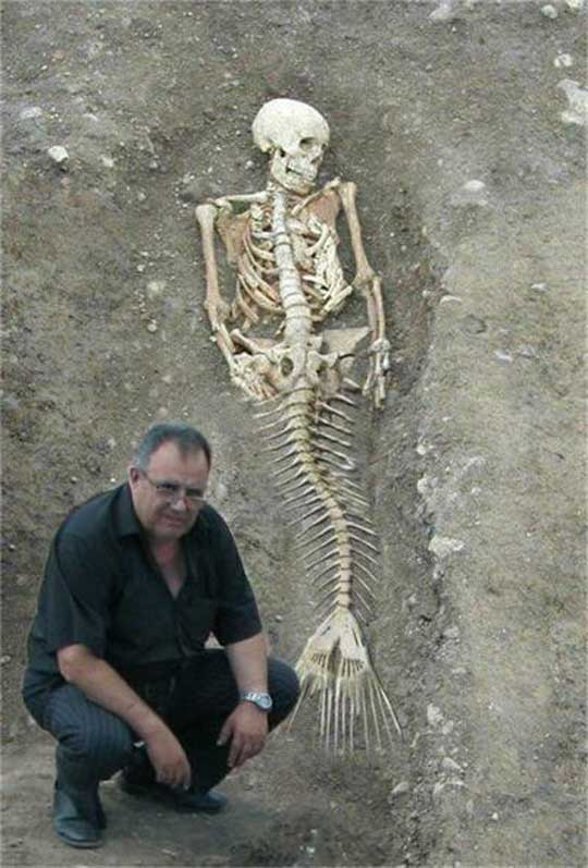 Real Mermaids Found Discovery Channel Funny Images And Videos Blog