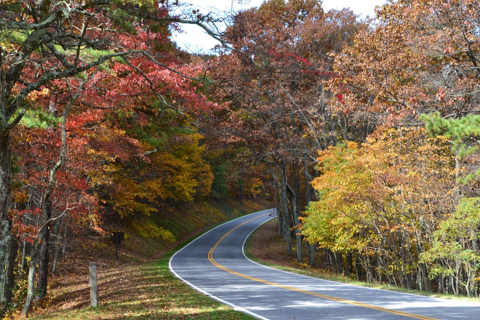 Shenandoah Valley Furniture ... & Nathan The Travellers: Fall Foliage at Shenandoah National Park