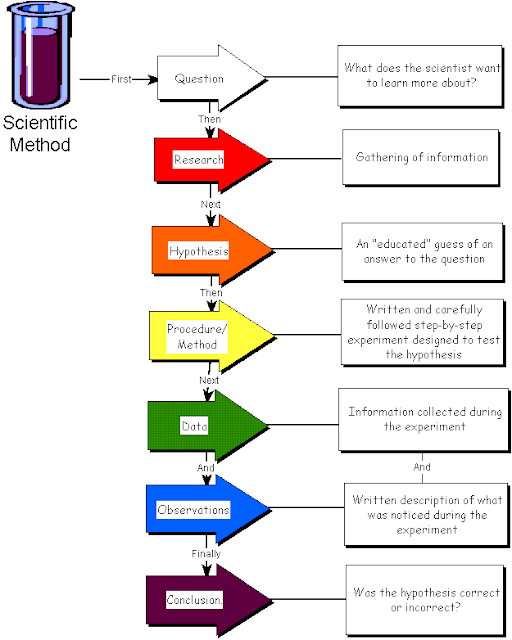 steps in scientific method