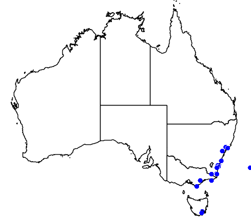 Map showing the distribution of the spotted handfish