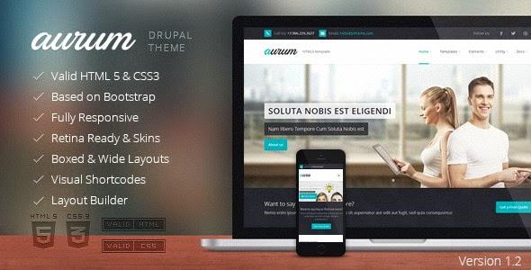 download Aurum - Responsive Multipurpose Drupal Theme