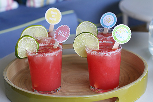 Margarita Drink Stirrers | Paper & Party Love