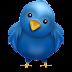 Nama asli si Burung Twitter