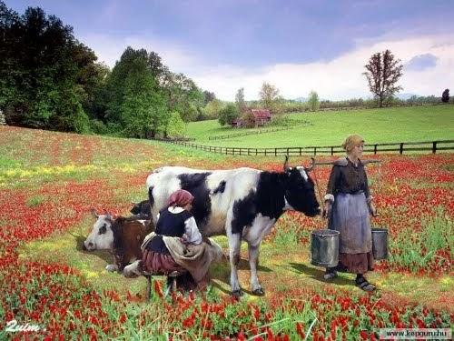 Mitolog a asturiana antiguos aperos de labranza - Cuadros de vacas ...