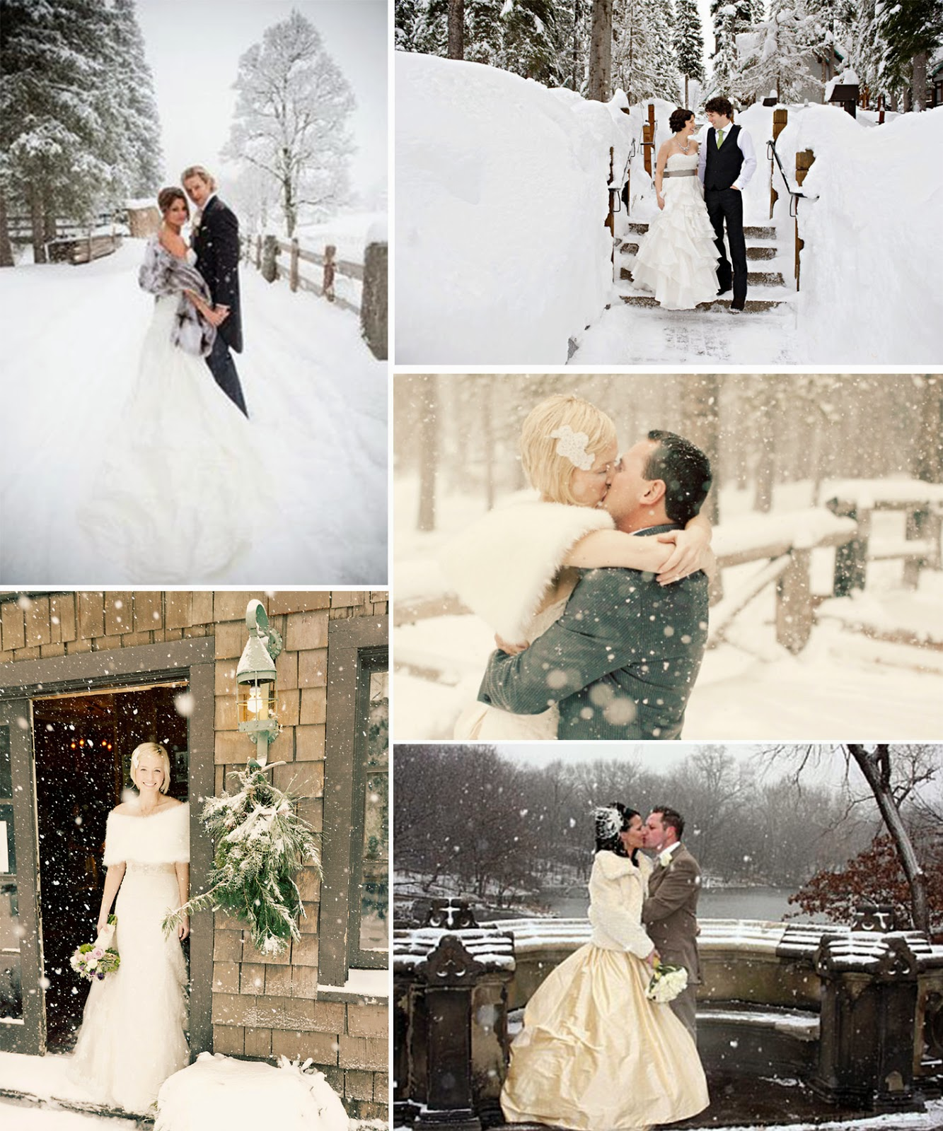 prom dress: Inspiration for winter theme wedding party