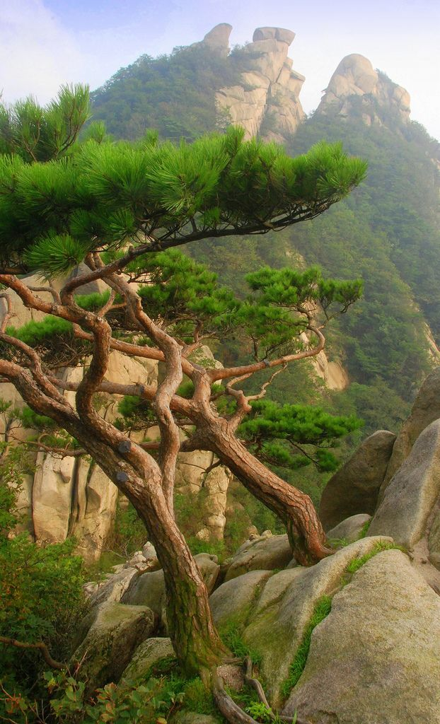 Bukhansan National Park South Korea
