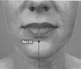 Chengjiang (REN 24) : tepi bawah bibir bawah