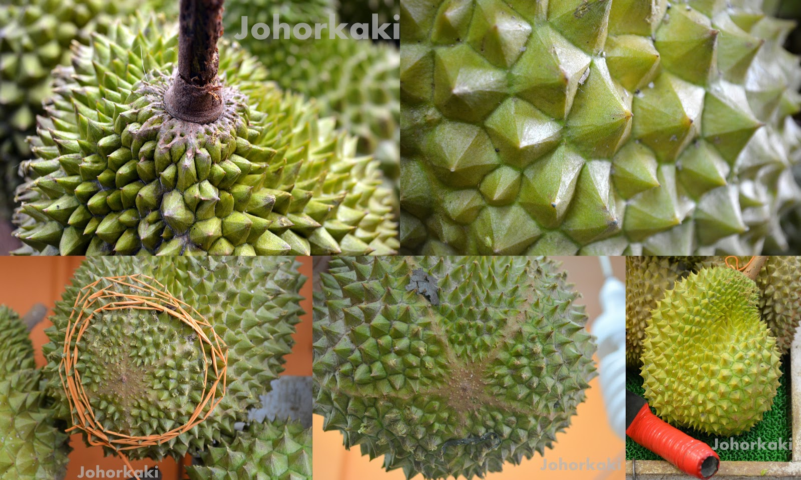 how to never be sold a fake mao shan wang musang king msw durian again johor kaki travels. Black Bedroom Furniture Sets. Home Design Ideas