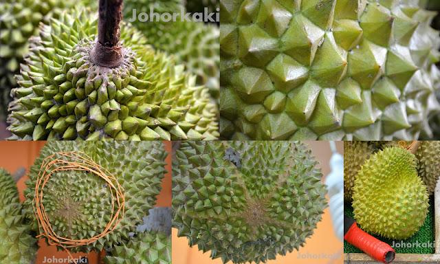 Durians2%20collage%20MSW.jpg