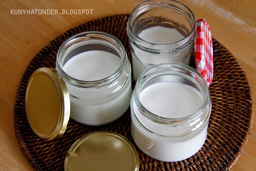 home_made_yogurt