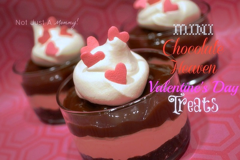 Mini Chocolate Heaven Valentine's Day Treats Lucky Leaf