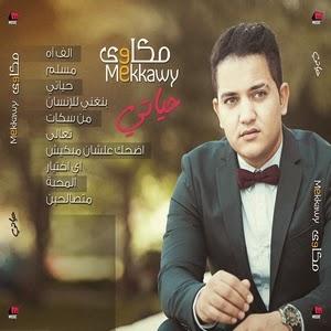 Mekkawy-Hayaty 2014