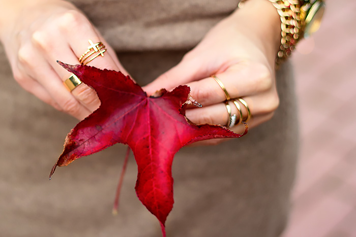 gold rings, fall leaves, beautiful autumn, red