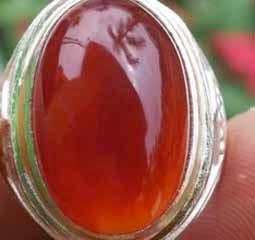 Khasiat dan Manfaat Batu Red Raflesia