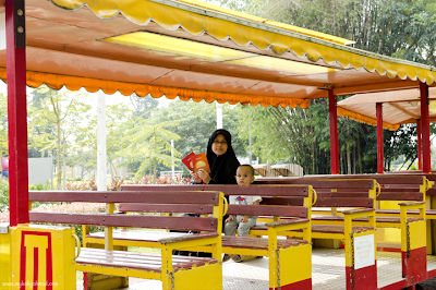trem RM3 dewasa