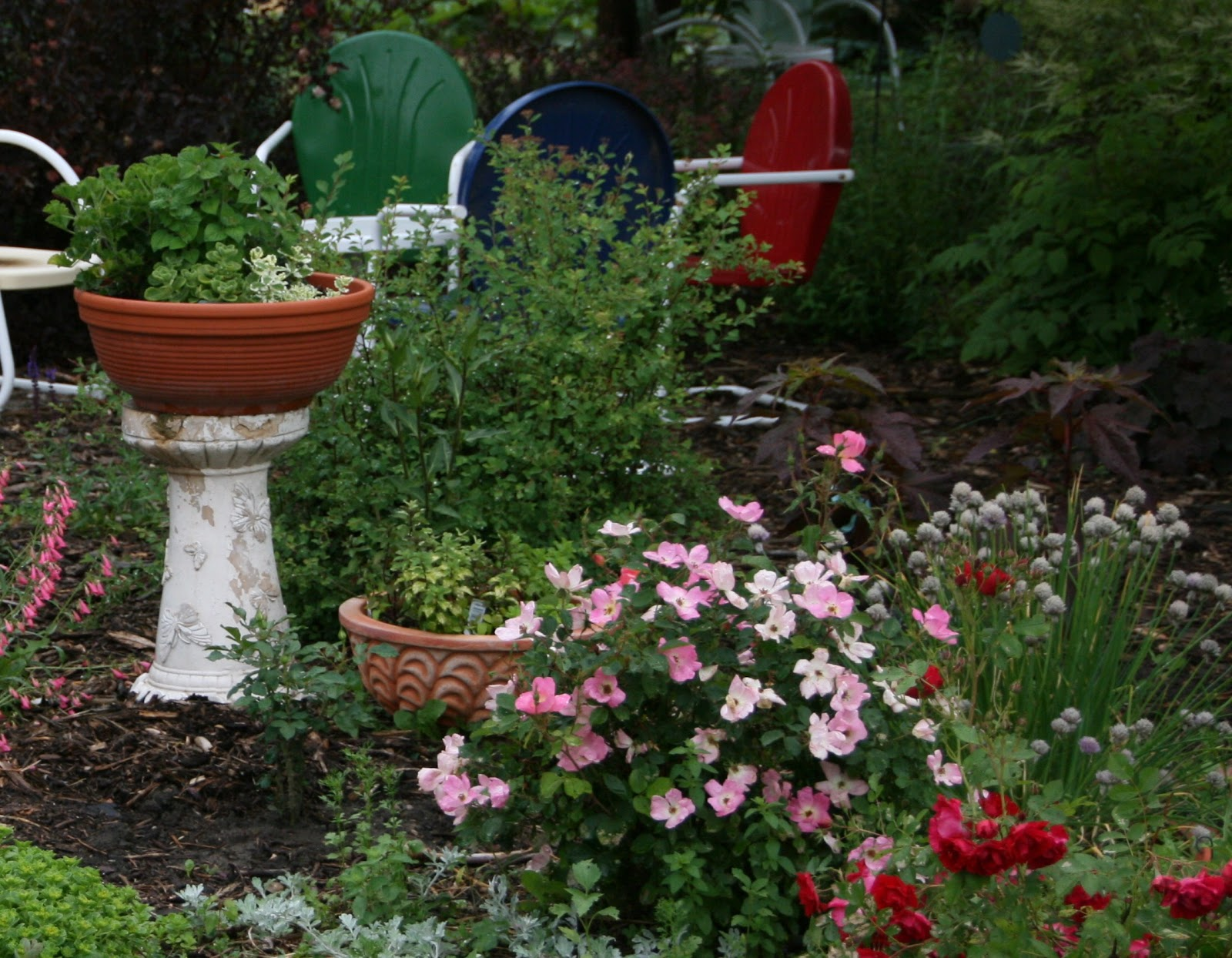 Wiese Acres Container Gardens Growing Vegetables And Herbs