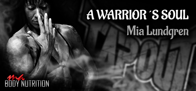 A warrior`s soul