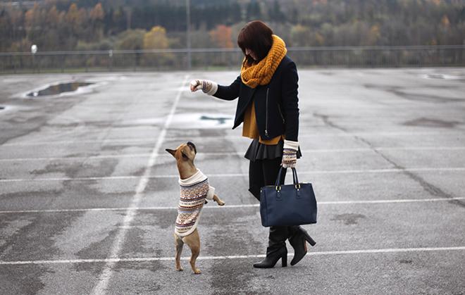 outfit-trend-fashionblogger-persunmall-zara-lederrock-faltenrock-partnerlook-mocca-frenchbulldog-pullover-senfgelb-mustard-dunkelblau-tasche-prade-looaklike-jacke-schal-ernstingsfamily-overknee-boots-hmtrend-handschuhe-partnerlook