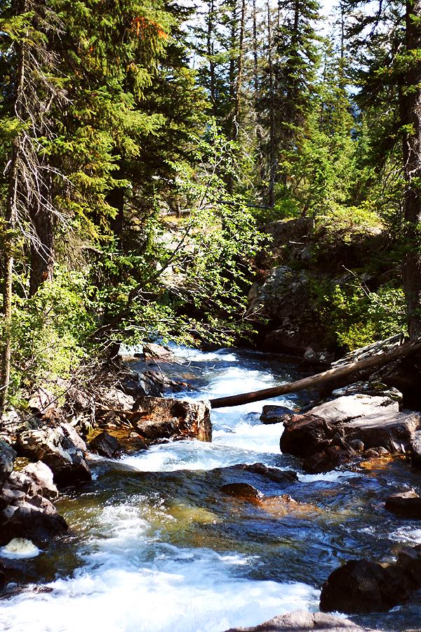 River Grand Teton