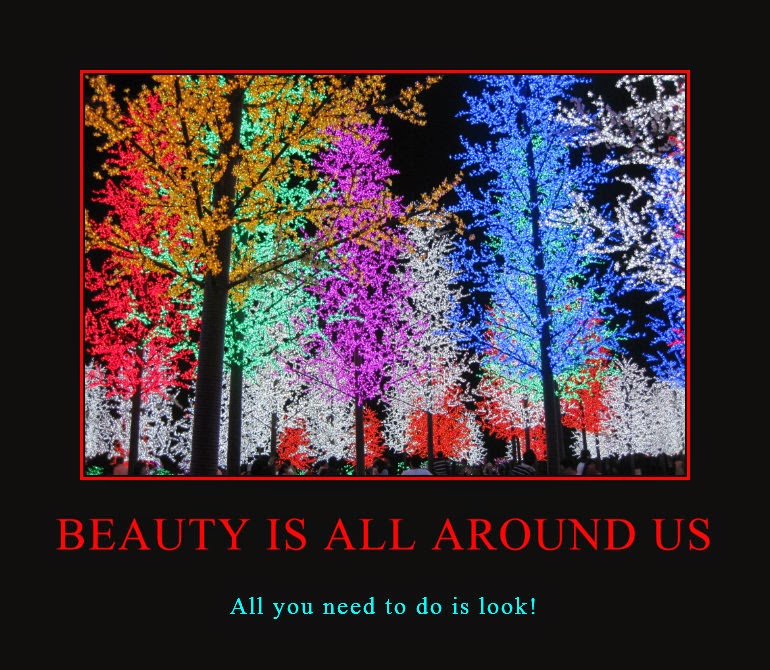 Beauty Is All Around Us Poster