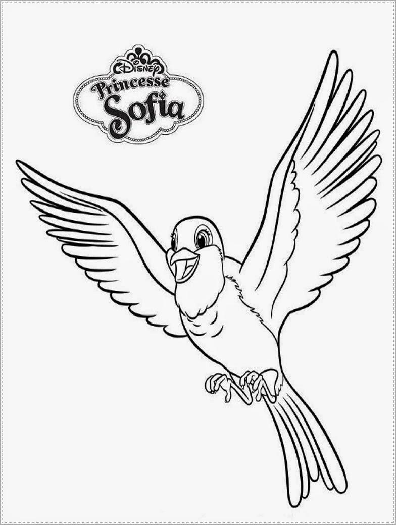 mewarnai burung robin teman putri sofia