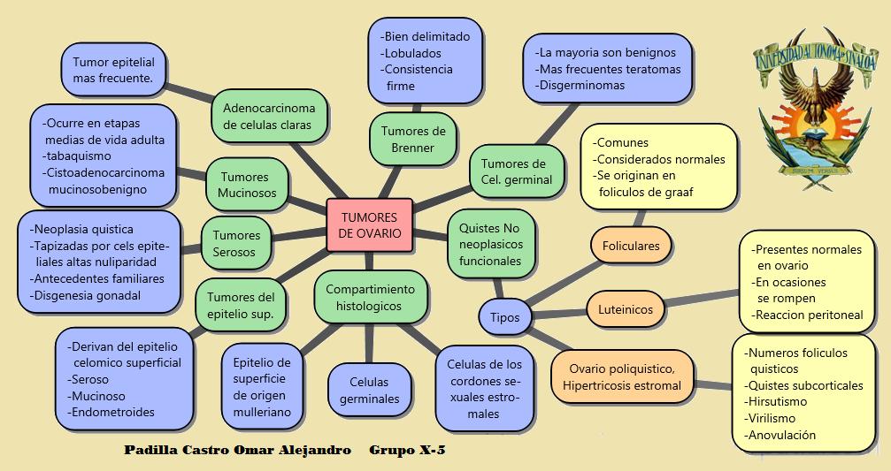 Omar Padilla Y la Ginecologia Enero-Junio 2014: 2014