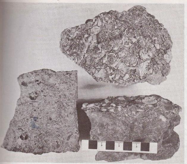 Struktur Batuan Beku